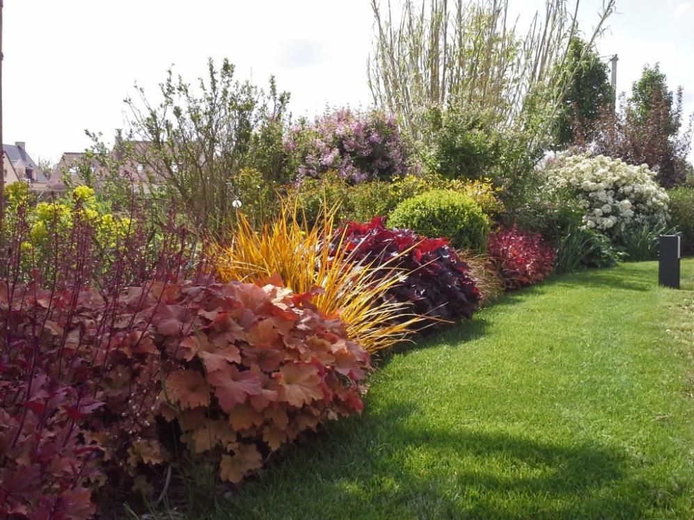 Quand tailler les arbustes elegant taille arbustes with for Quand tailler les hibiscus de jardin