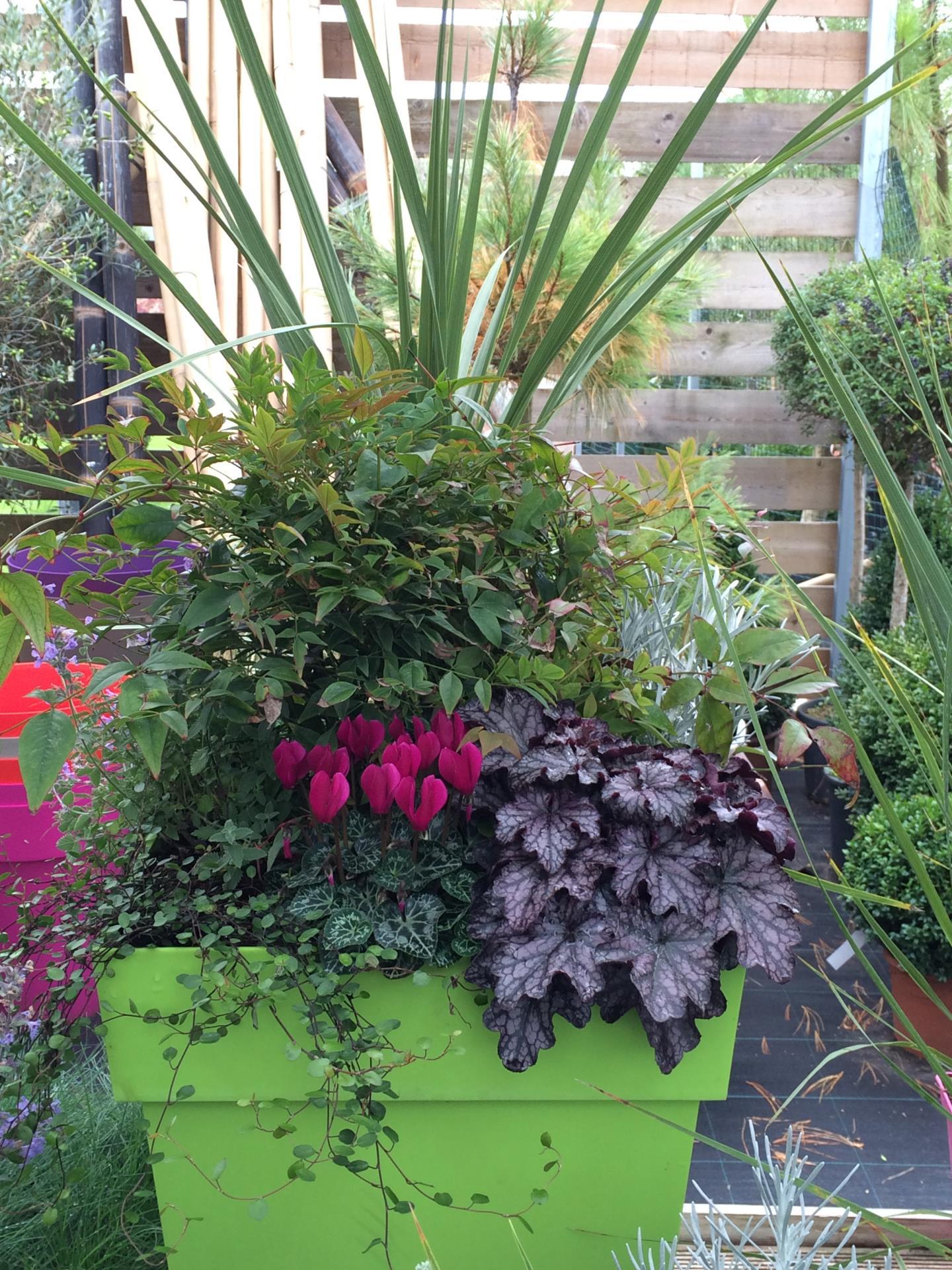 R alisation de pots et de jardini res d 39 hiver et de d but for Jardiniere d hiver